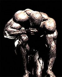Как сделать плечи шире и сильнее