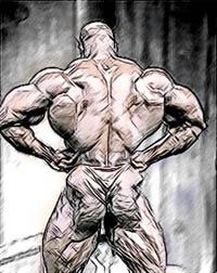 Как сделать плечи шире в тренажёре
