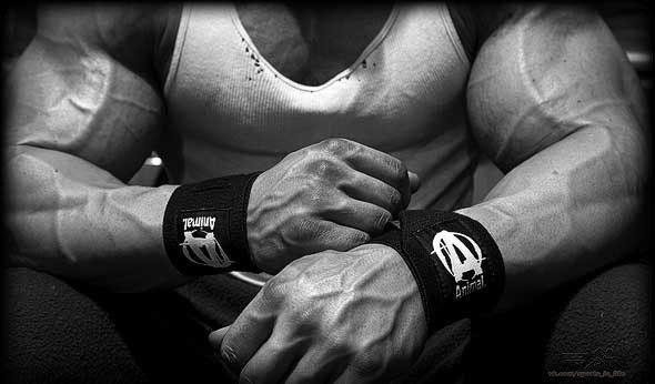 ПРИНЦИП ПИРАМИДА для роста мышц