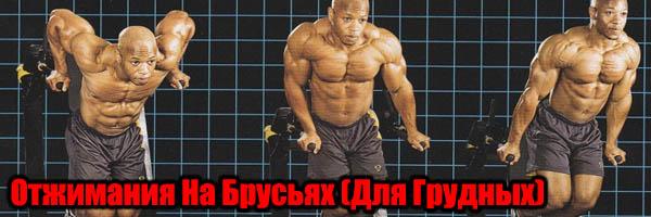 Упражнение отжимания на брусьях: Как Накачать грудные Мышцы