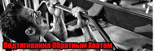 Подтягивания обратным хватом – упражнение на бицепс