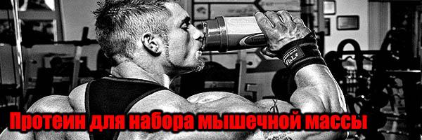 Протеин для набора мышечной массы: Сколько в Порции?