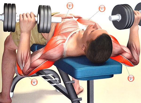 упражнение для грудных