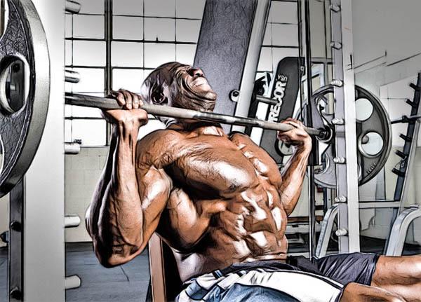 программа тренировок на рост мышц